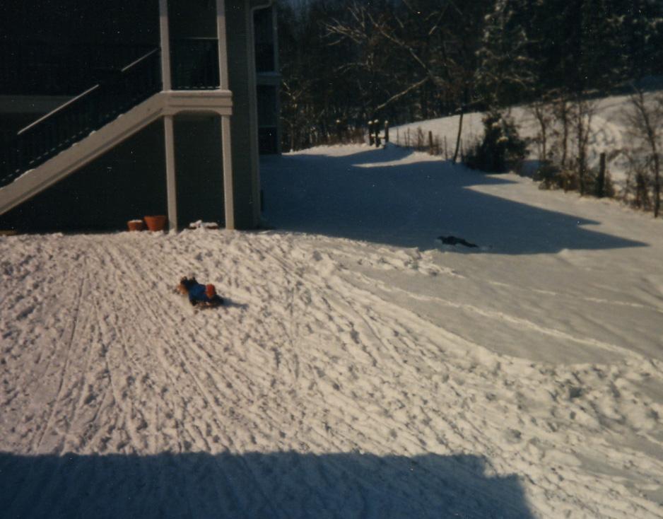 063 sledding in Nashville - 3 yrs.jpg