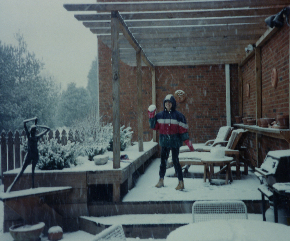 132 snowstorm Chkrng Wds deck.jpg