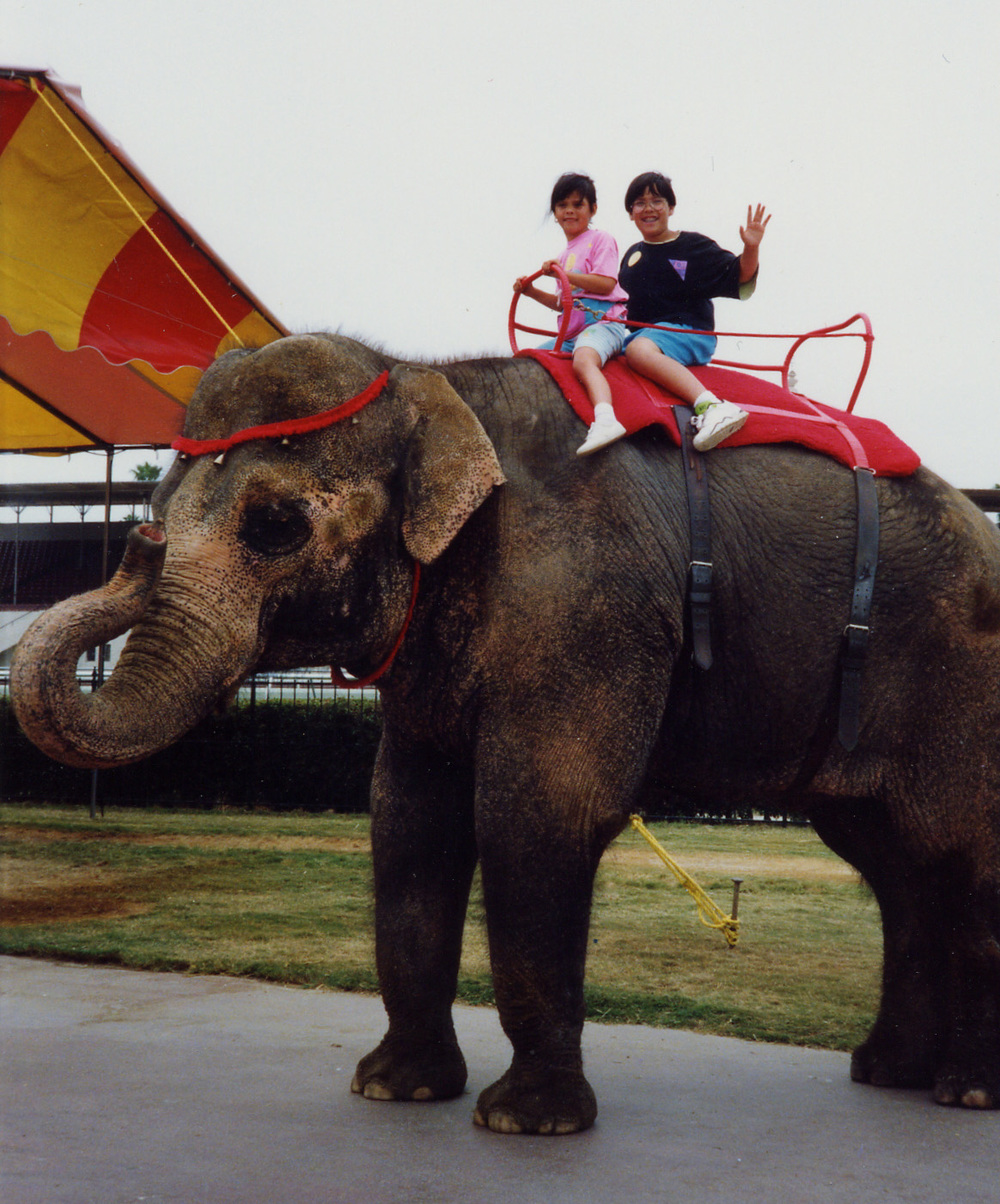 383 riding elephant w Brandon.jpg