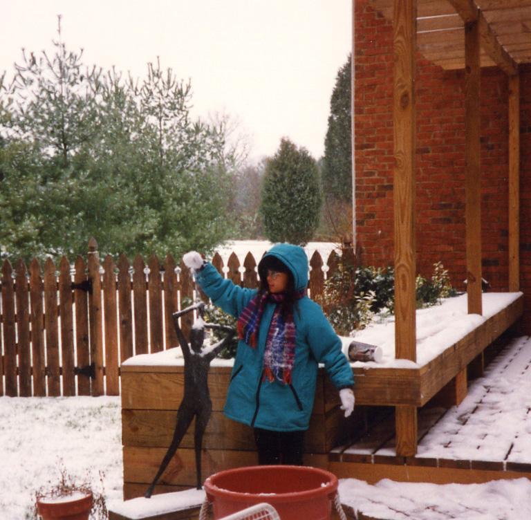 436 snow scene Chkrng Wds deck.jpg