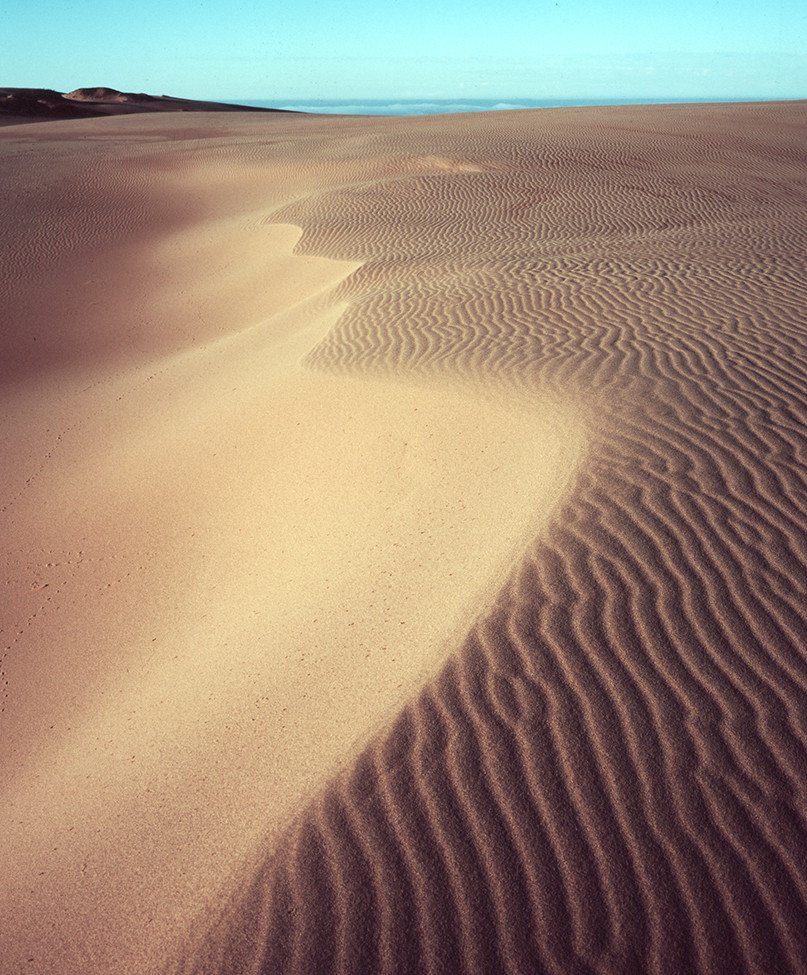 Guadalupe_Dunes_No_3_MA1136-10.jpg