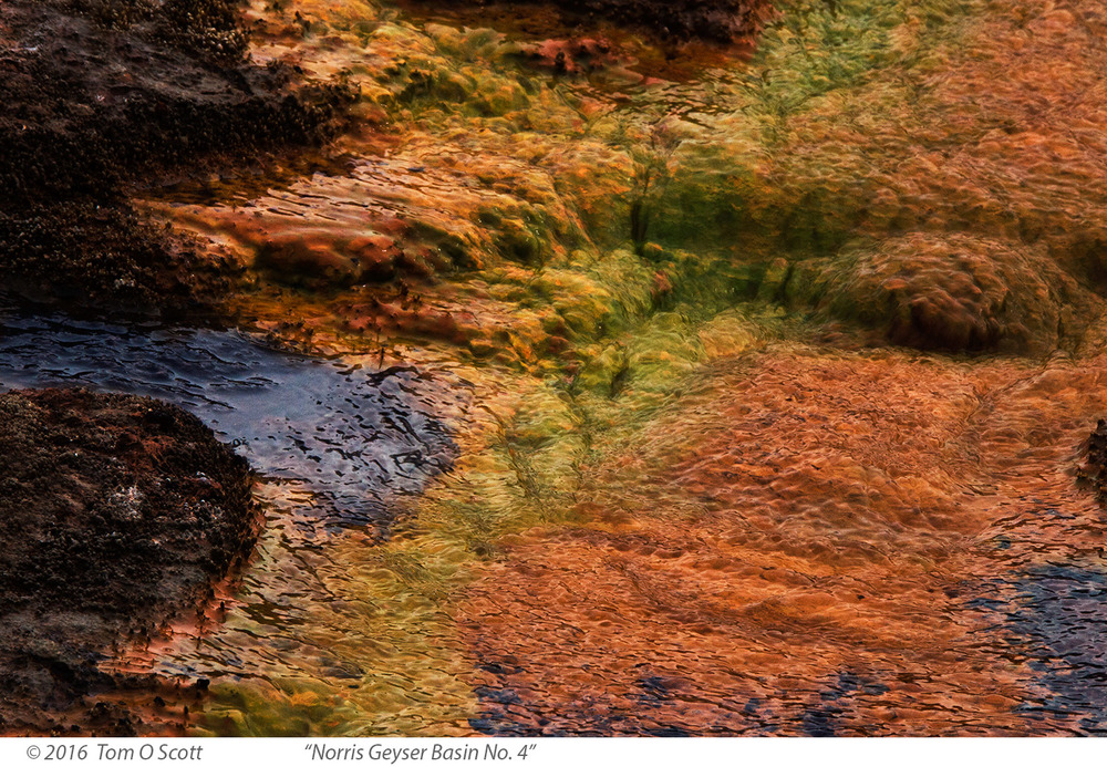 Norris Geyser Basin No. 4