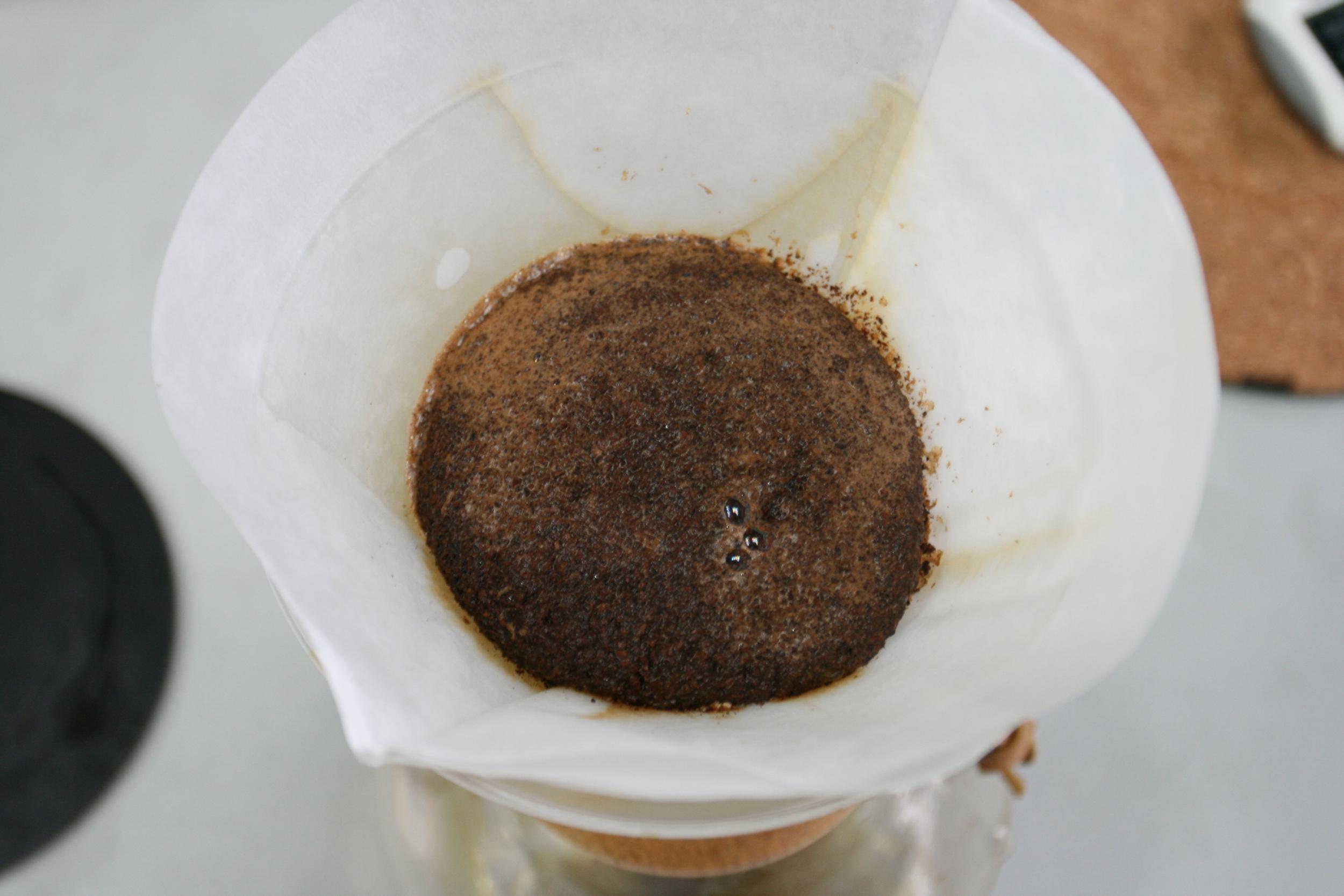 Chemex Brewing