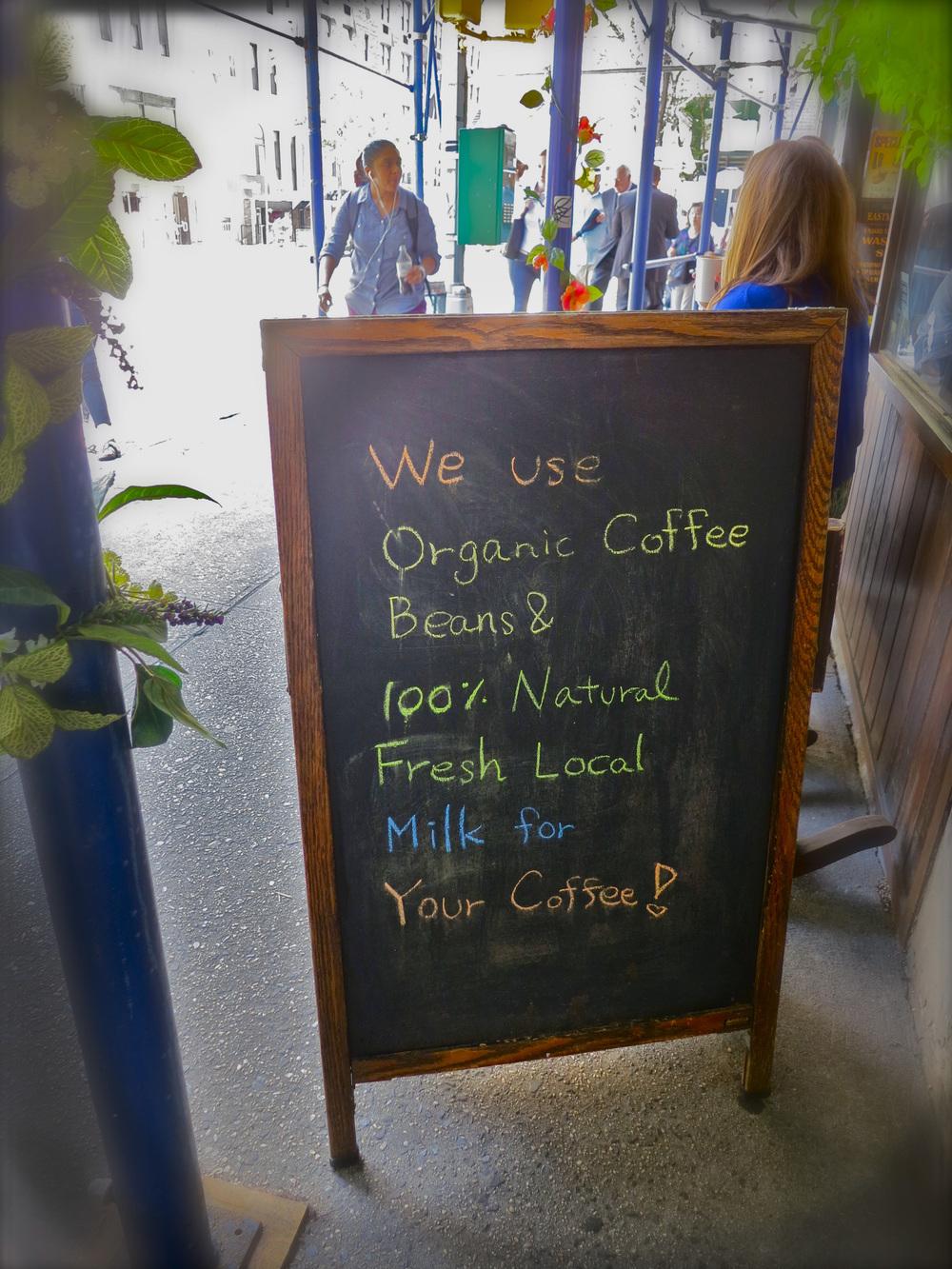 Lucid Café