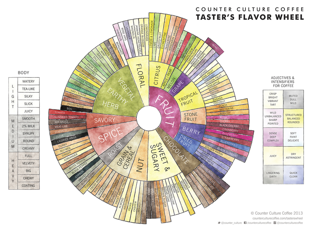Counter Culture Coffee's beautiful flavor wheel
