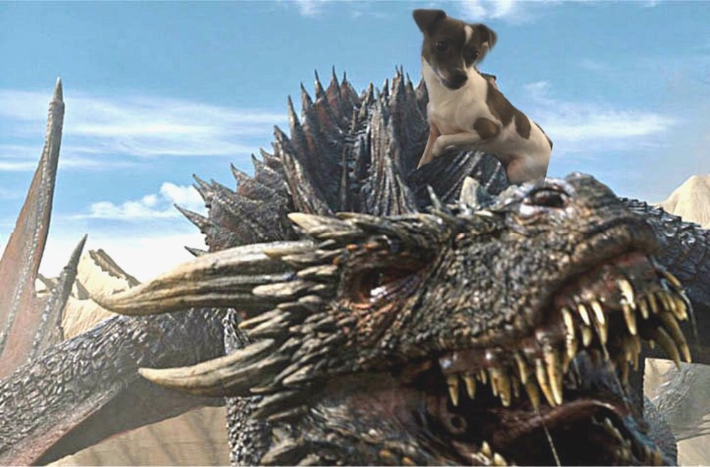 A pic of me riding my dragon on vacation!