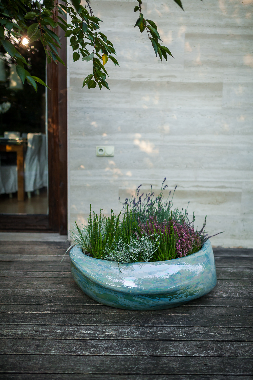 20160915-planter-IMG_4203.jpg