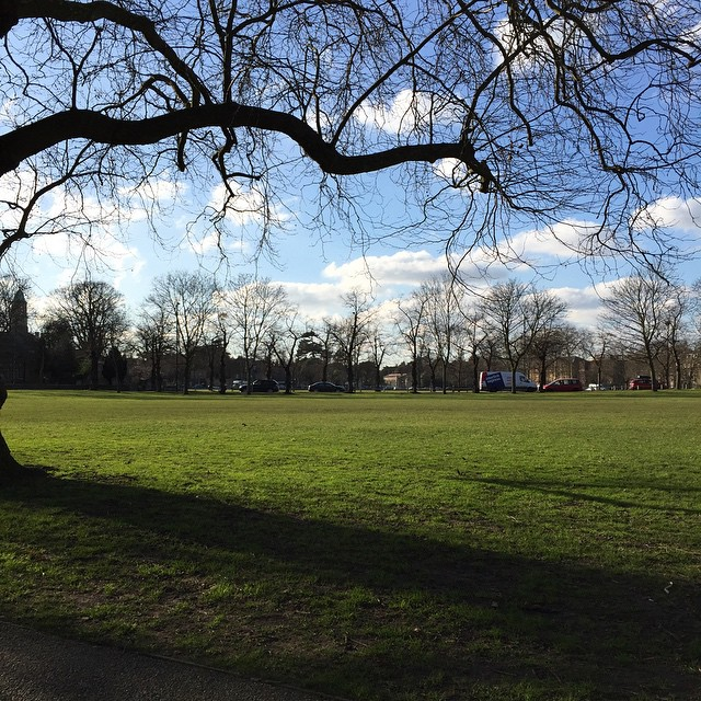 Loving the sunshine today, had to capture it quickly. Shame it's so cold! #kew #wintersun
