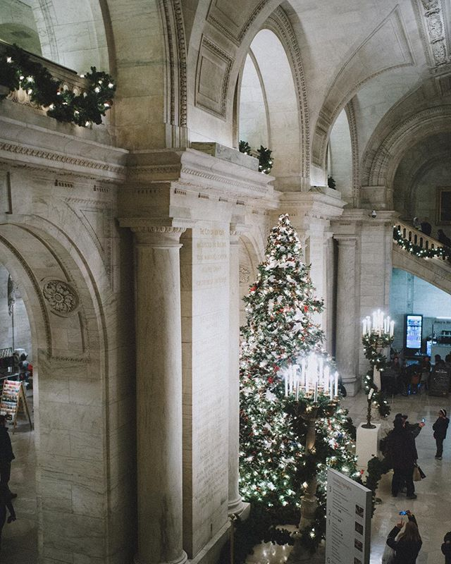 One of our favorite trees in one of our favorite buildings #nyc #VSCOcam