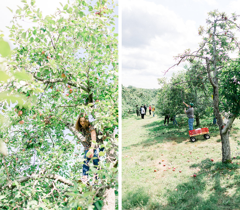 20180929_WEST-POINT-APPLE-PICKING_x001.jpg