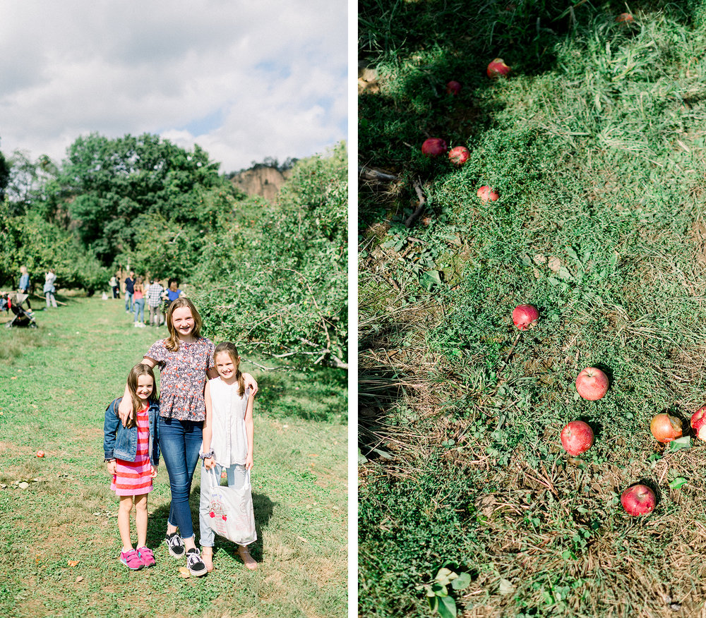 20180929_APPLE-PICKING_x005.jpg