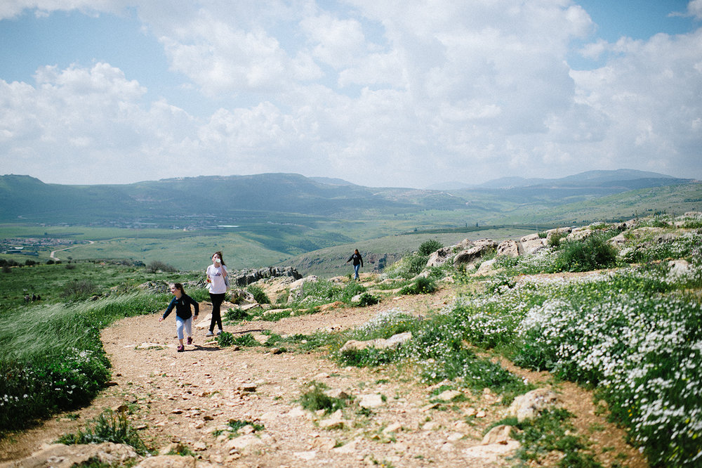 I never would have guess that Israel was this green and lush…so gorgeous.