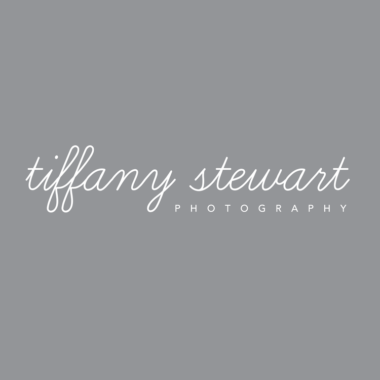 tiffany stewart photography