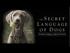 In The Secret Language of Dogs, Kesler explains the importance of learning how to listen to your animal by learning to read the behavioral and energetic traits of your dog. -