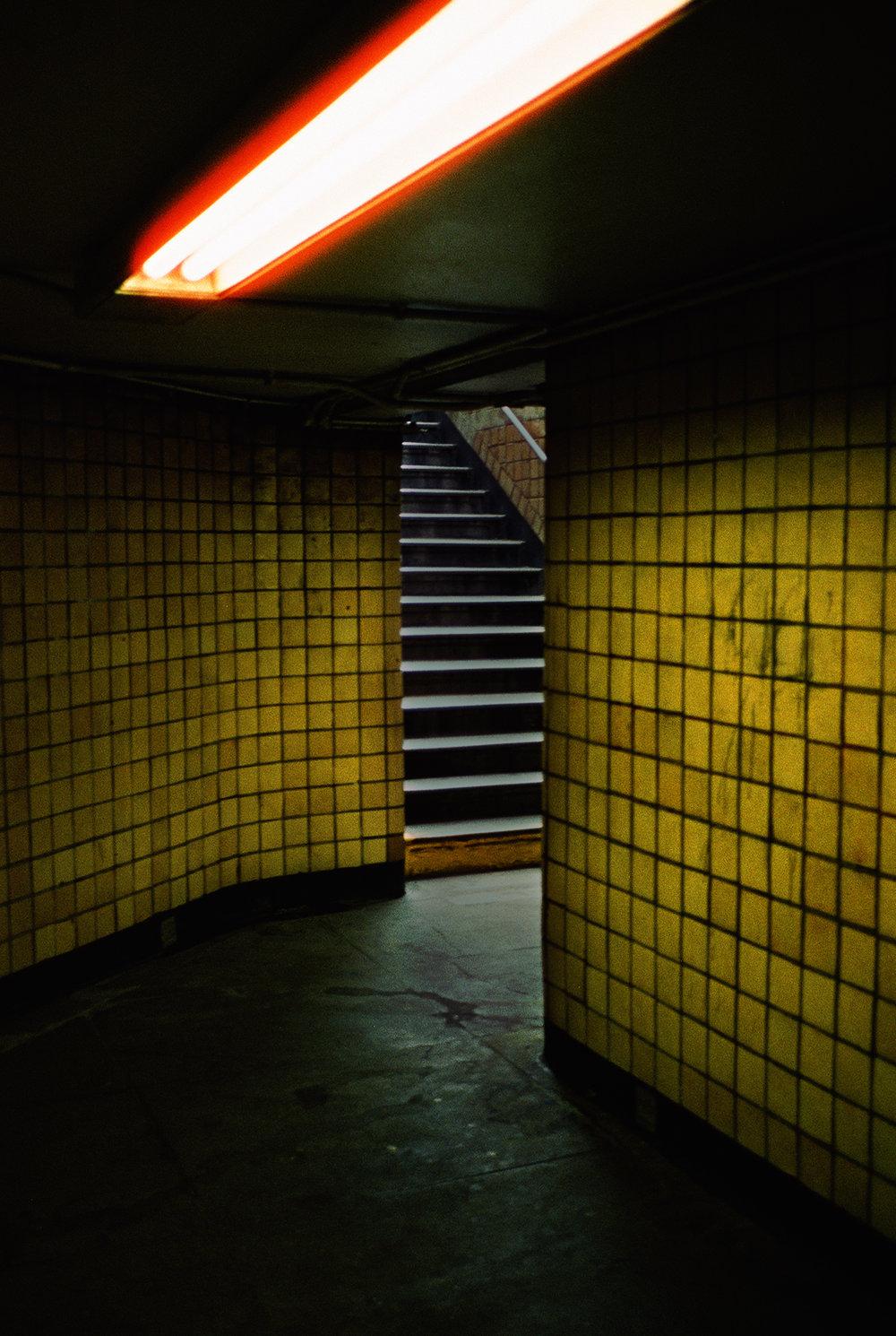 yellowungrd_2.jpg