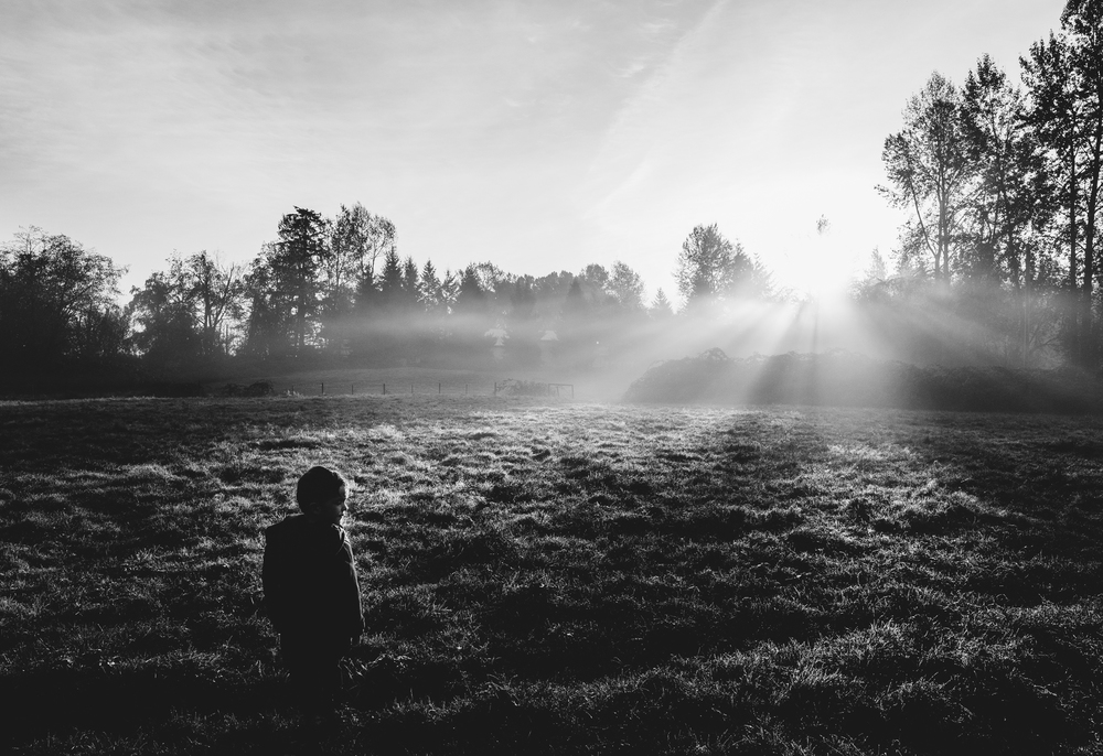 Atticus field sun rays bw (1 of 1).jpg
