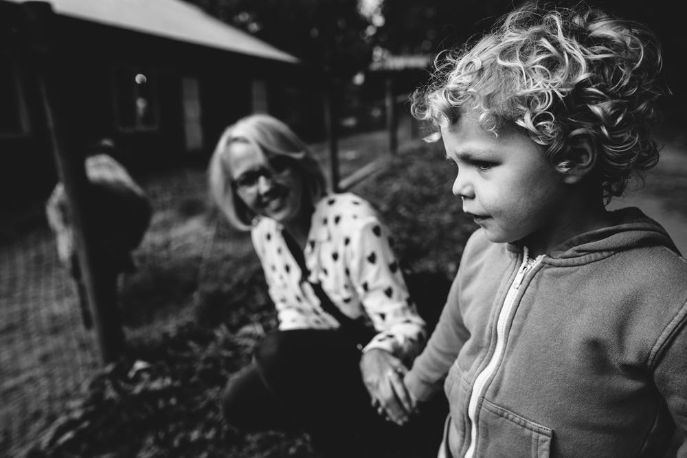 sully holding grandma's hand apple barn (1 of 1).jpg