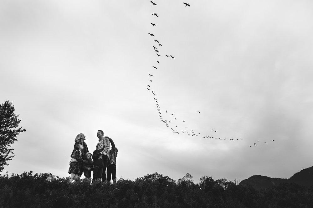 amos birds-1 - Copy.jpg