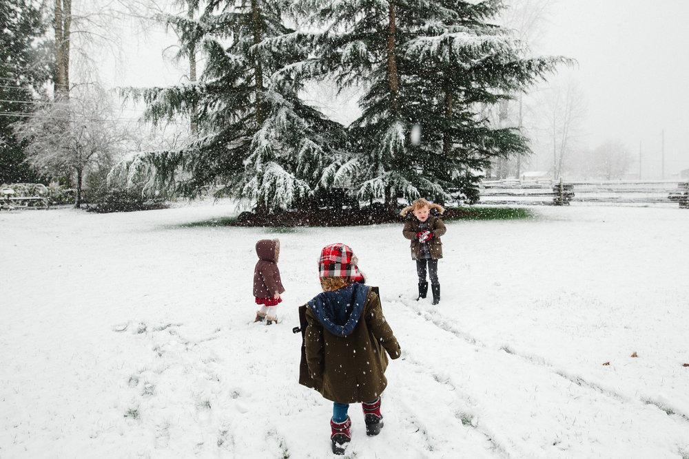 all three first snow 2016-1.jpg