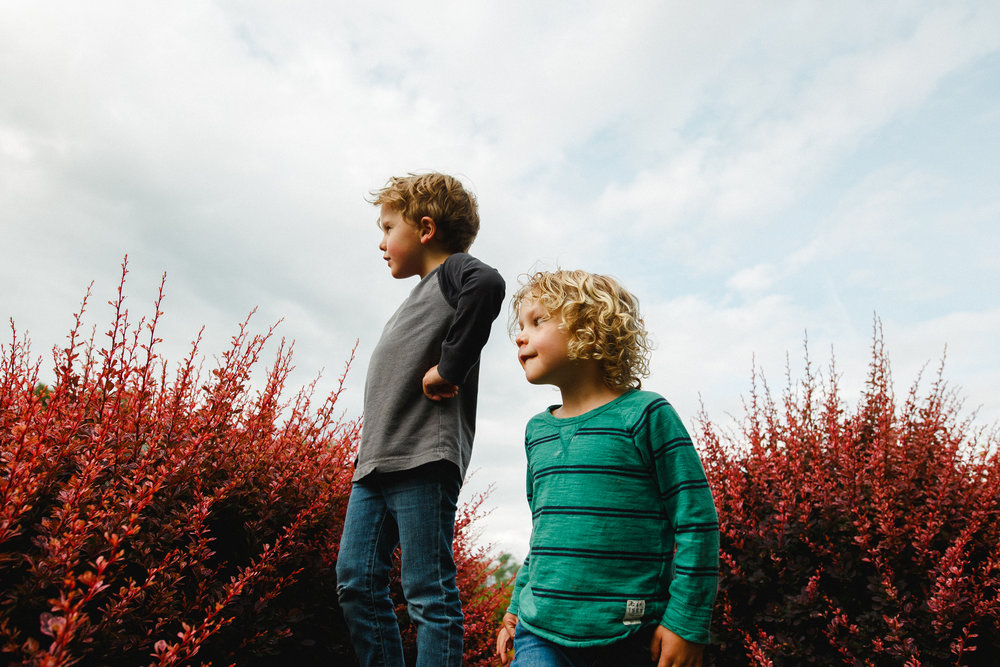 The boys on rock red bushes-1.jpg