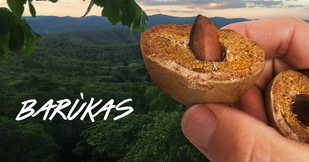 BARUKAS 15% OFF! - A 'NUTS' Breaking Normal Deal! * details below *