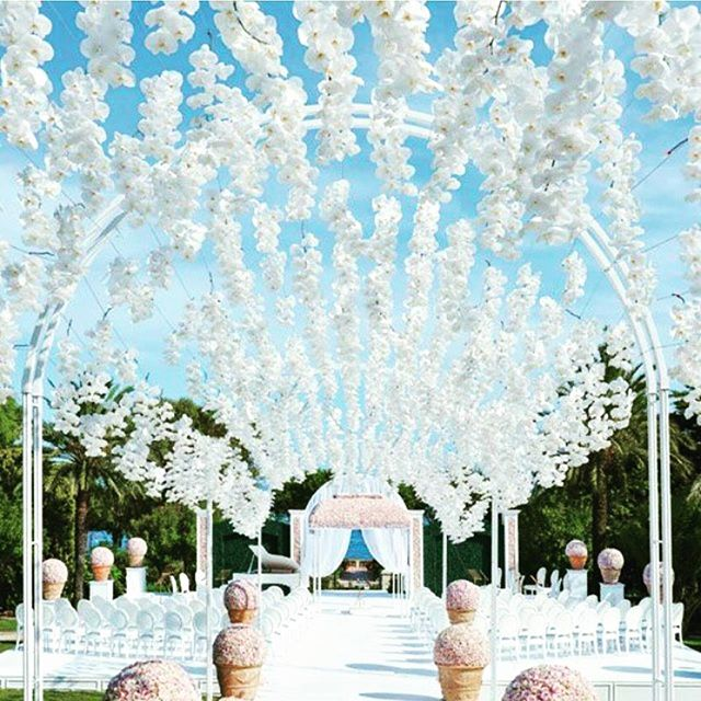 Aisle decor goals 🌸🌸💕💕 Absolutely love the orchid ceiling 🌸 please tag if you know source #eventvendorsuk #aisledecor #orchids #wedding #weddingdecor #photooftheday #photographer #flowers #floral #floraldecor #bride #bridetobe #blogger #ukwedding #ukweddingphotographer #allwhite #luxurywedding #eventplanner #ukweddingplanner