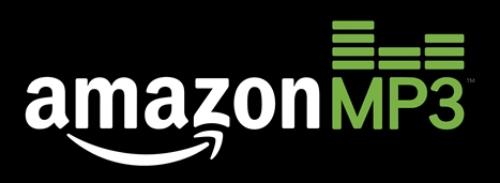 Amazon_logo1-300x111.jpg