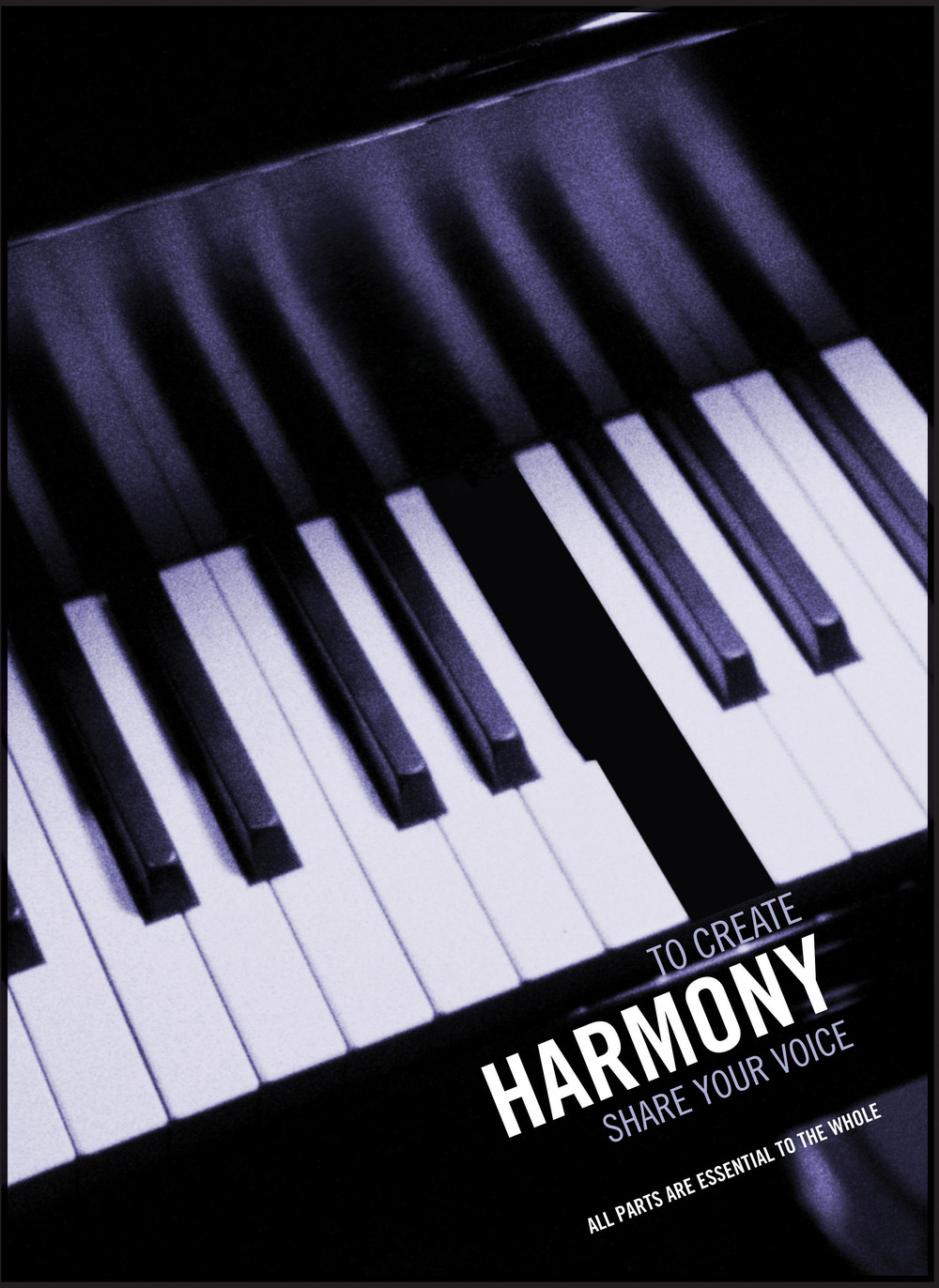 CHANTIX_Team_Heiku-piano.jpg