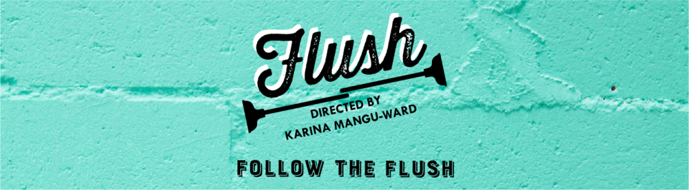 FLUSH The Documentary