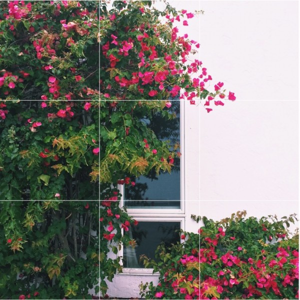 How to use the rule of thirds to take better photographs via @social_studio