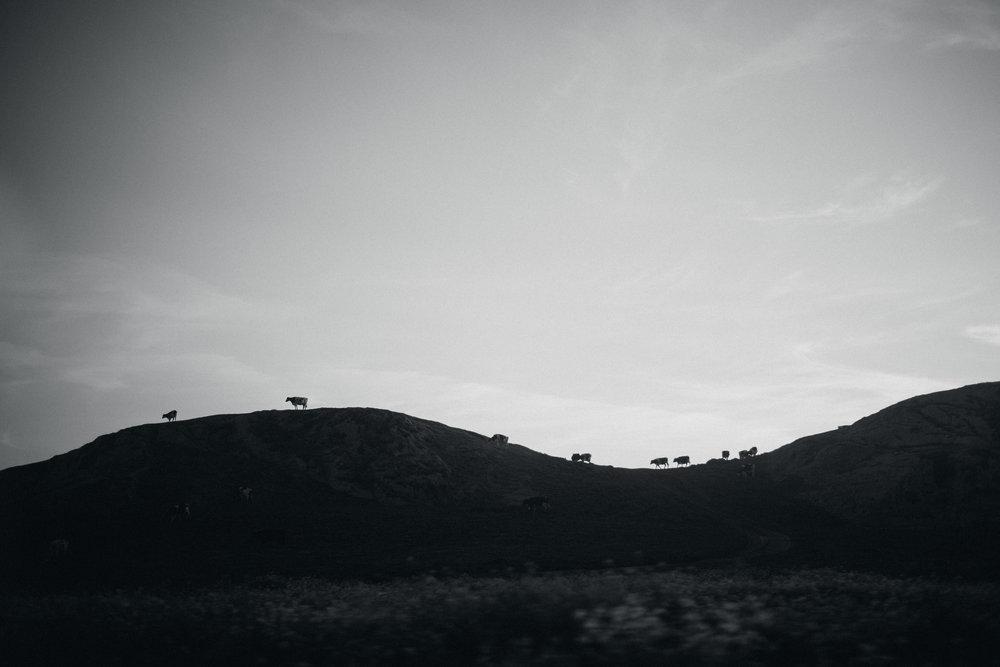 0-176.jpg