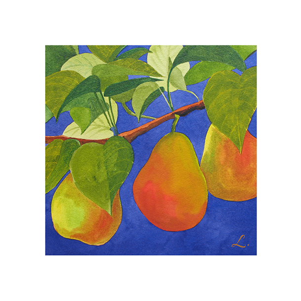 Pears on Branch 122.png