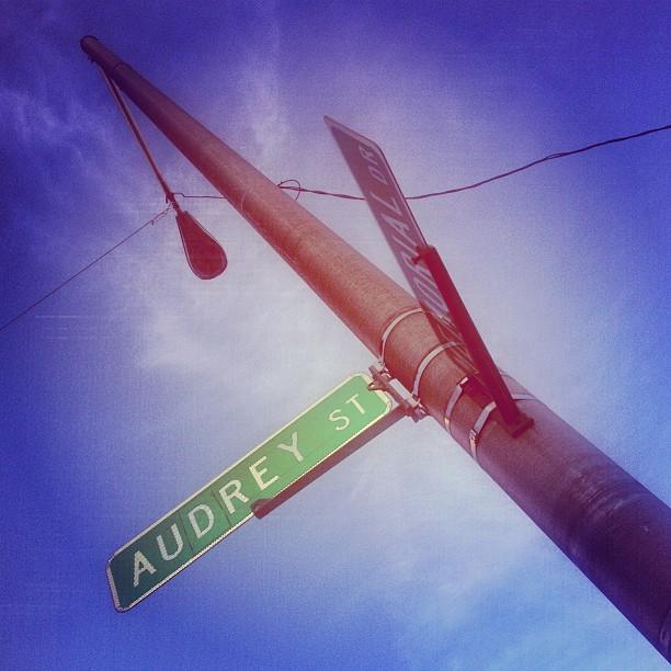 I like this street.