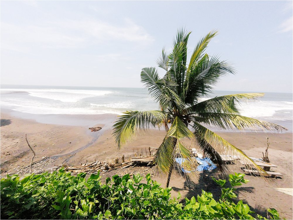 Our arrival to Balian Beach > the surf village