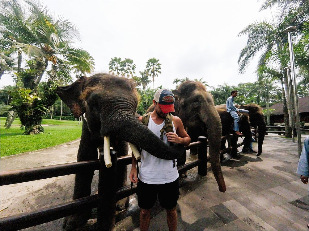 Bali-Indonesia-Brandilynn-Aines-Photography_0568.jpg