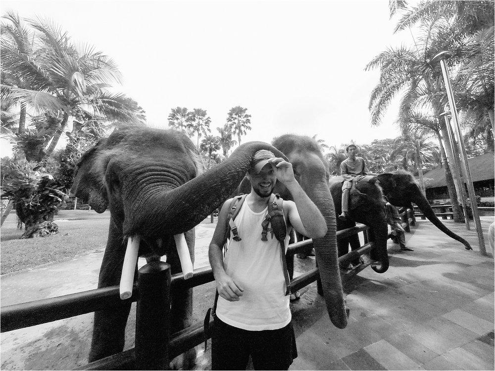 Bali-Indonesia-Brandilynn-Aines-Photography_0570.jpg