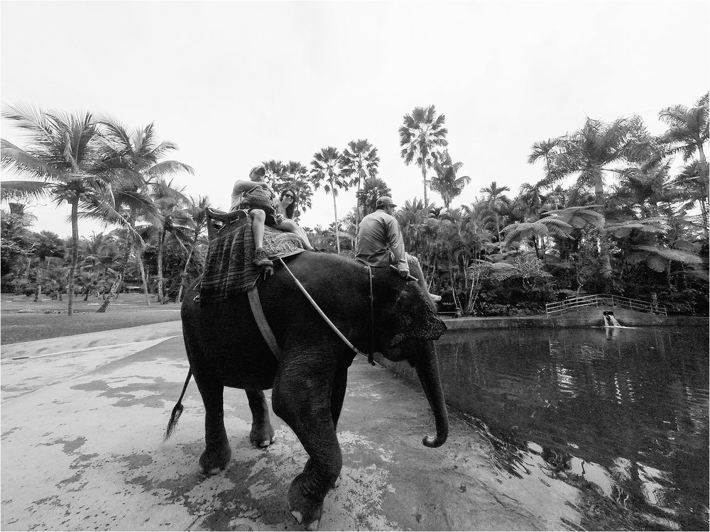 Bali-Indonesia-Brandilynn-Aines-Photography_0556.jpg