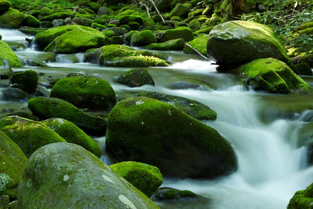 RiversWaterfalls-11.jpg