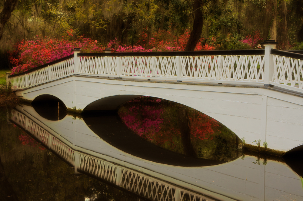 Gardens-7.jpg