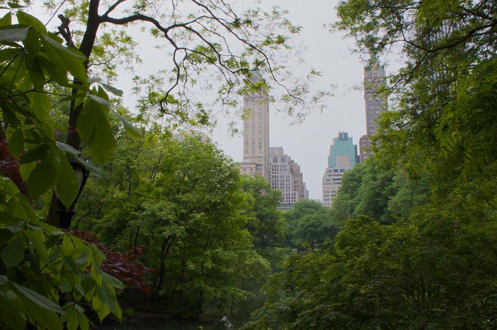 NYC2009May92.jpg
