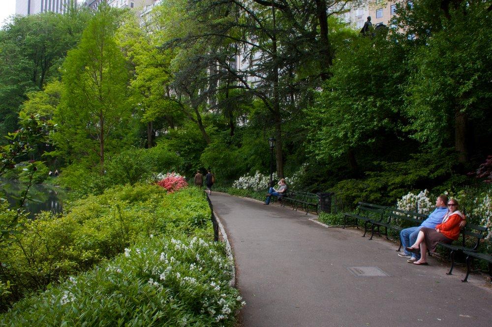 NYC2009May99.jpg
