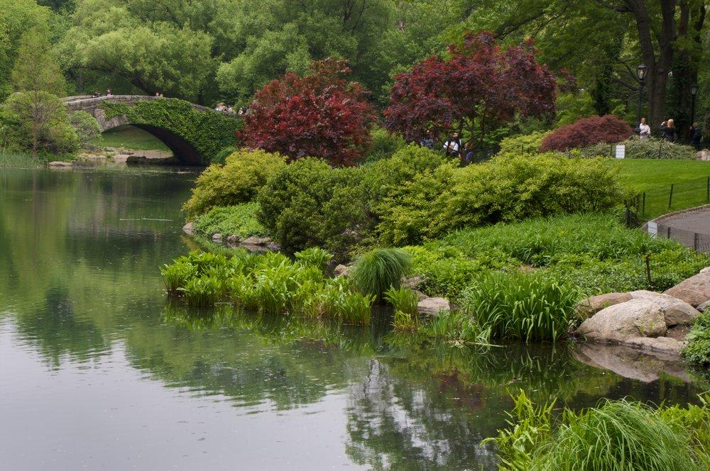 NYC2009May126.jpg