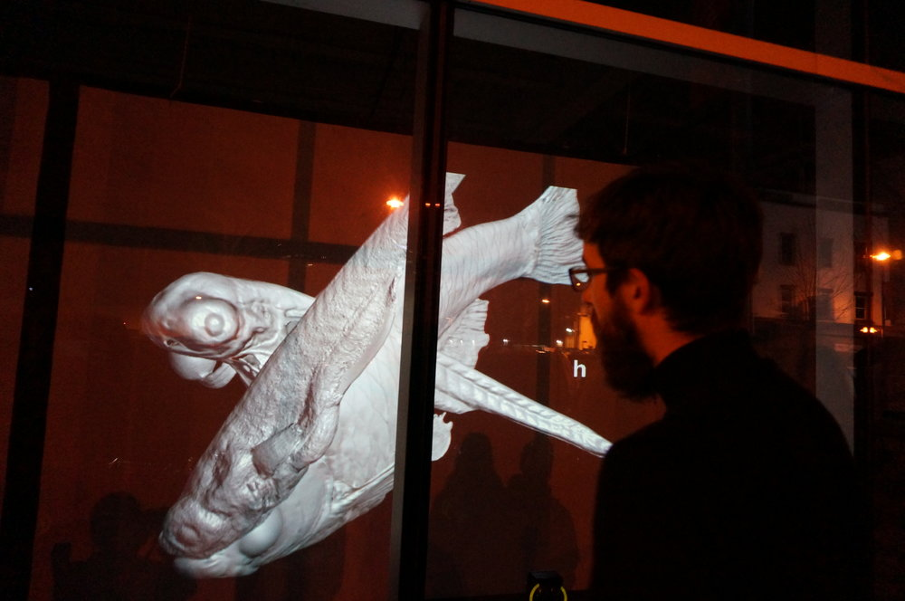 JEAN-SÉBASTIEN GAUTHIER // DANS LA MESURE / WITHIN MEASURE : AN IMMERSIVE VIDEO INSTALLATION // PHOTO BY BEN SCHMIDT