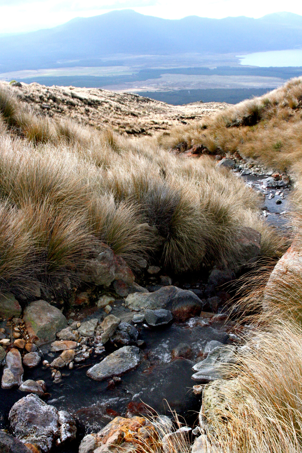 tongariro_monsoon_gm11.jpg