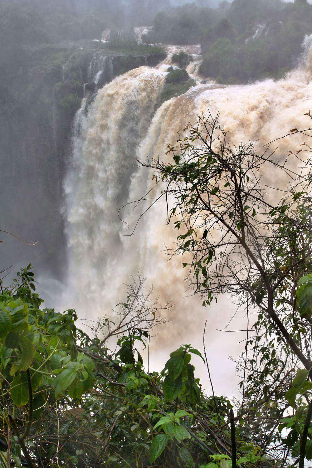 iguazu_monsoon_gm17.jpg