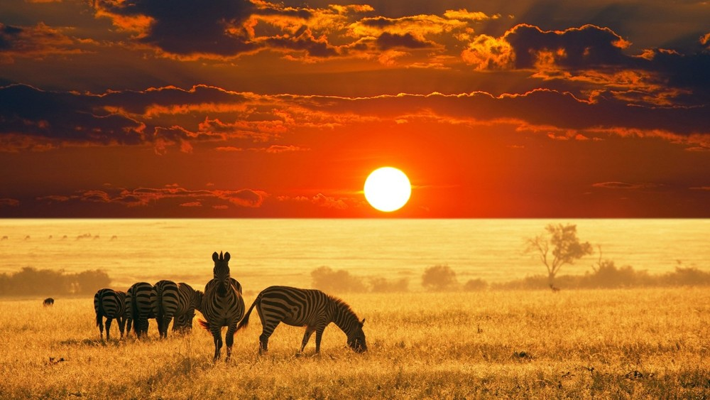 Exclusive-Escapes-Africa-Safari-Uganda-Safari-Travel-to-Africa-Map-of-Africa-Kampala-Exclusive-Luxury-Travel-Magazine-Beverly-Hills-Magazine-1.jpg