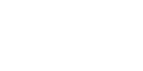Top Guides