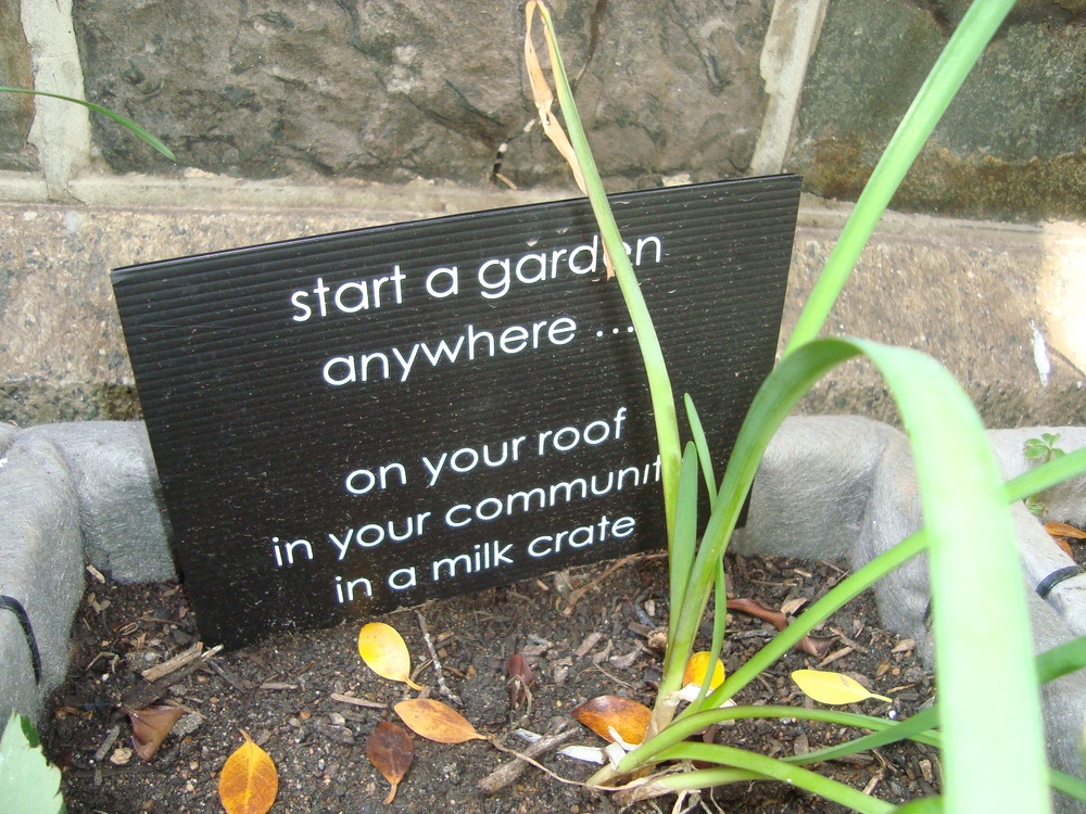 Gardens Give Joy