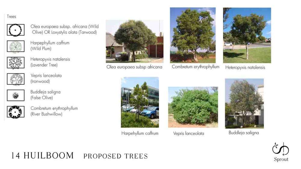 14 HUILBOOM landscape proposal 150706-4.jpg