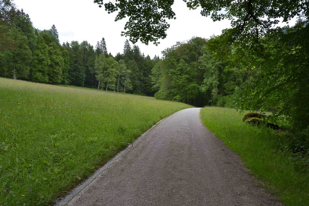 You can walk for quite a few kilometers in this park, through meadows and forests